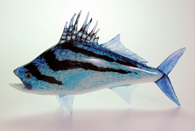 Rooster fish hopko art glass for Rooster fish pictures